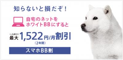 softbank-white-bb