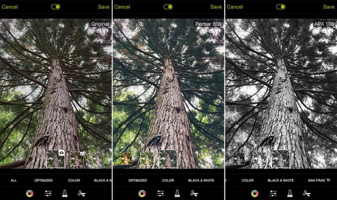 Side by side comparison: Original photo, Portrar 800 Filter, APX 100 Filter (Photo: Nicolai Boenig)