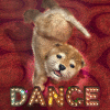 動物ダンス 子犬 – リズムゲームと育成ゲームがドッキング。音楽を演奏して、かわいい子犬を踊らせよう!